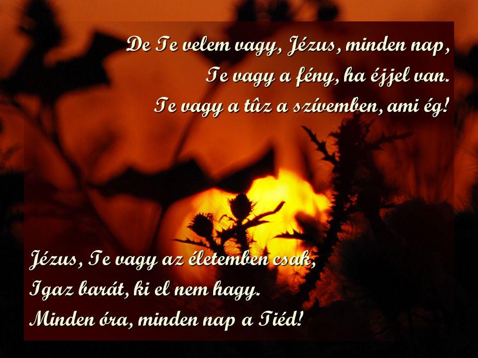 De Te velem vagy, Jézus, minden nap,