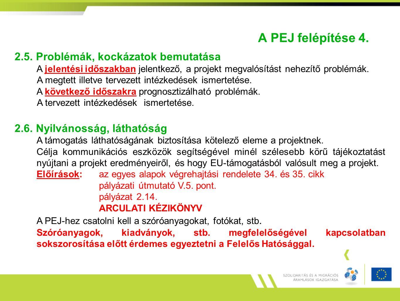 A PEJ felépítése 4. 2.5. Problémák, kockázatok bemutatása