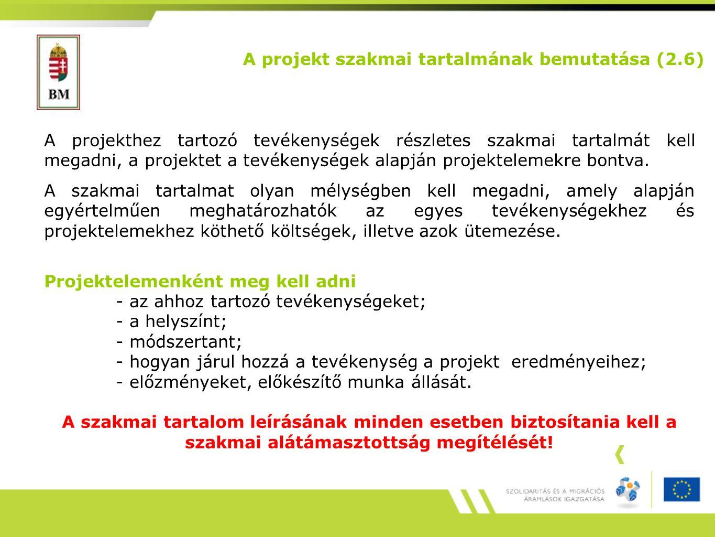 A projekt szakmai tartalmának bemutatása (2.6)