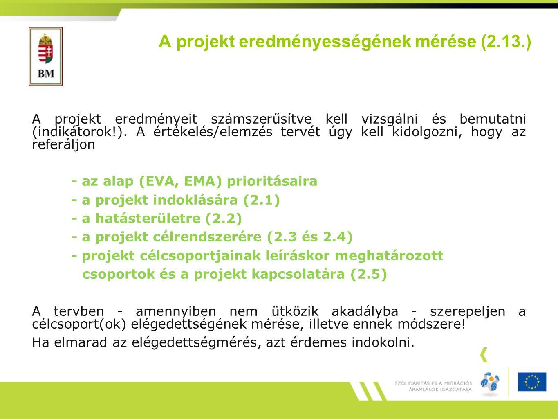 A projekt eredményességének mérése (2.13.)