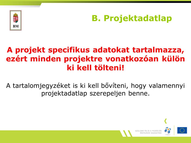 B. Projektadatlap A projekt specifikus adatokat tartalmazza, ezért minden projektre vonatkozóan külön ki kell tölteni!