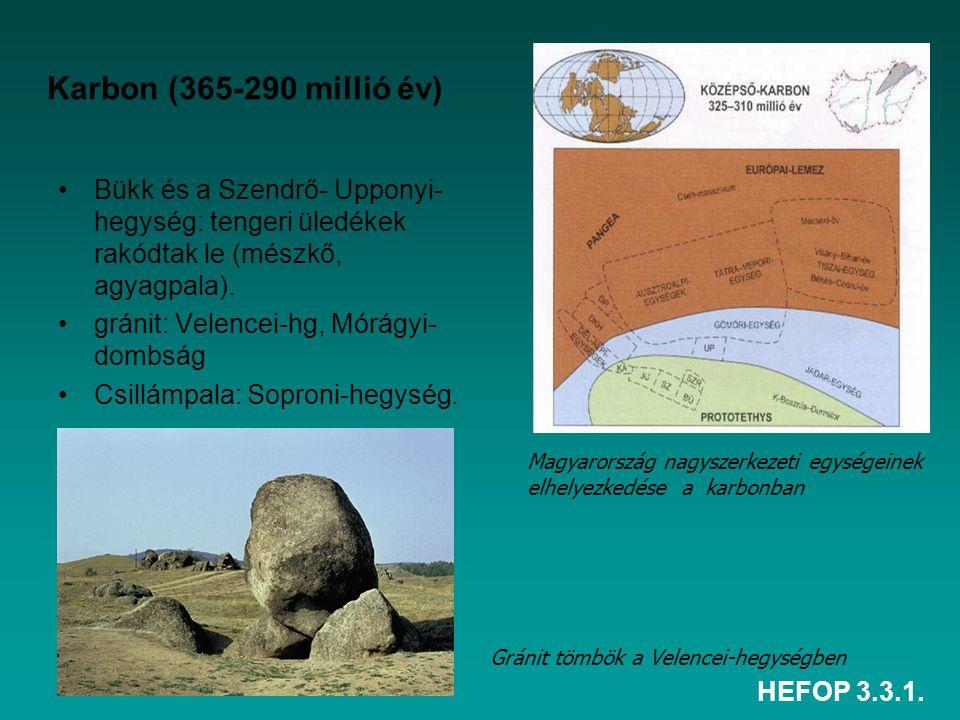 Karbon (365-290 millió év) Bükk és a Szendrő- Upponyi-hegység: tengeri üledékek rakódtak le (mészkő, agyagpala).