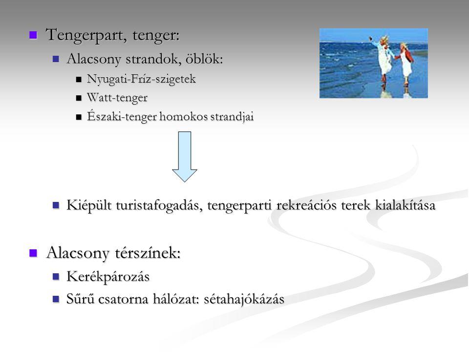 Tengerpart, tenger: Alacsony térszínek: Alacsony strandok, öblök: