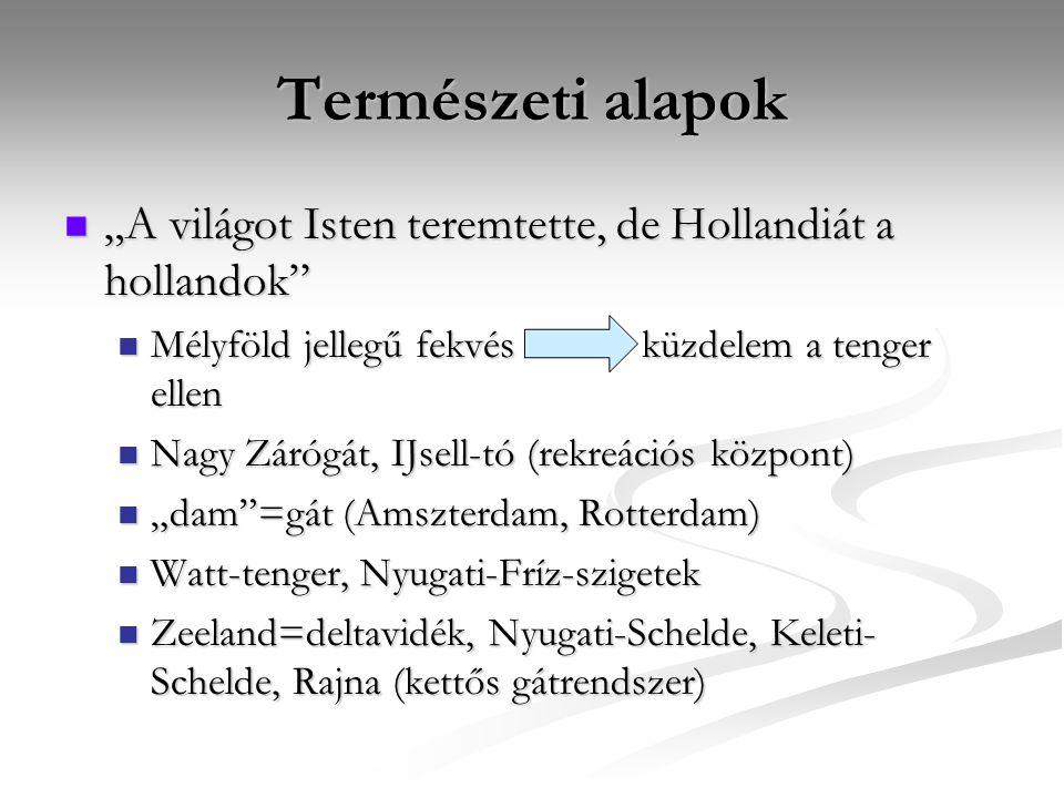 """Természeti alapok """"A világot Isten teremtette, de Hollandiát a hollandok Mélyföld jellegű fekvés küzdelem a tenger ellen."""