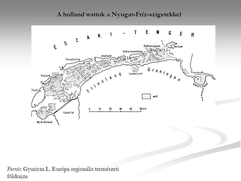 A holland wattok a Nyugat-Fríz-szigetekkel