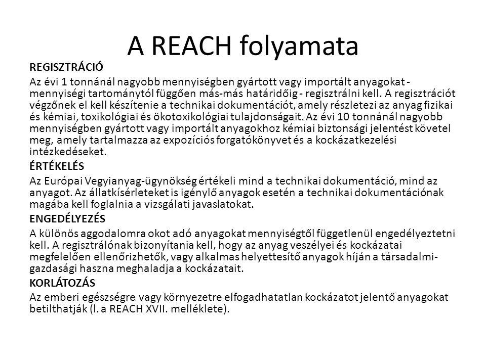 A REACH folyamata