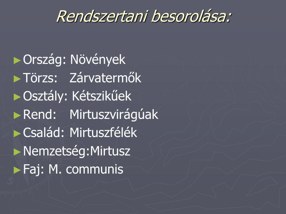 Rendszertani besorolása:
