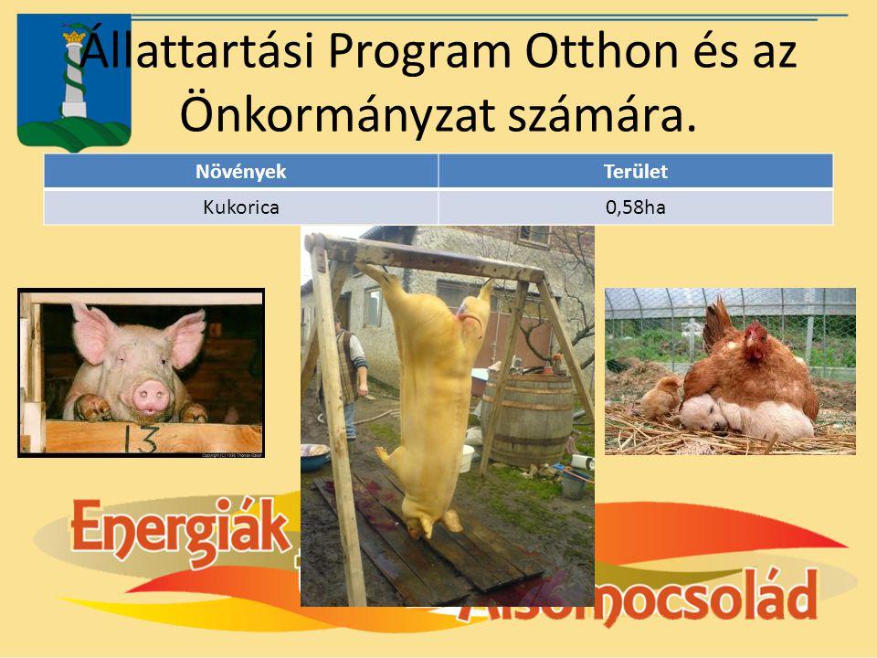 Állattartási Program Otthon és az Önkormányzat számára.