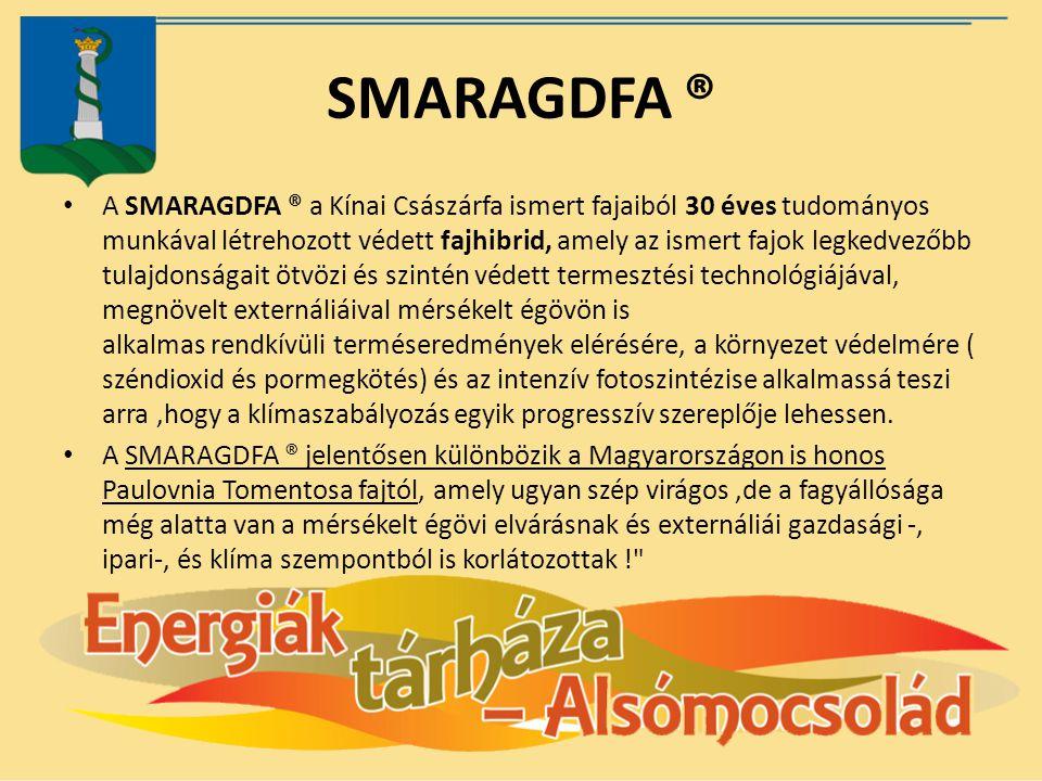 SMARAGDFA ®