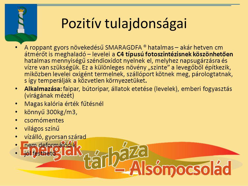 Pozitív tulajdonságai