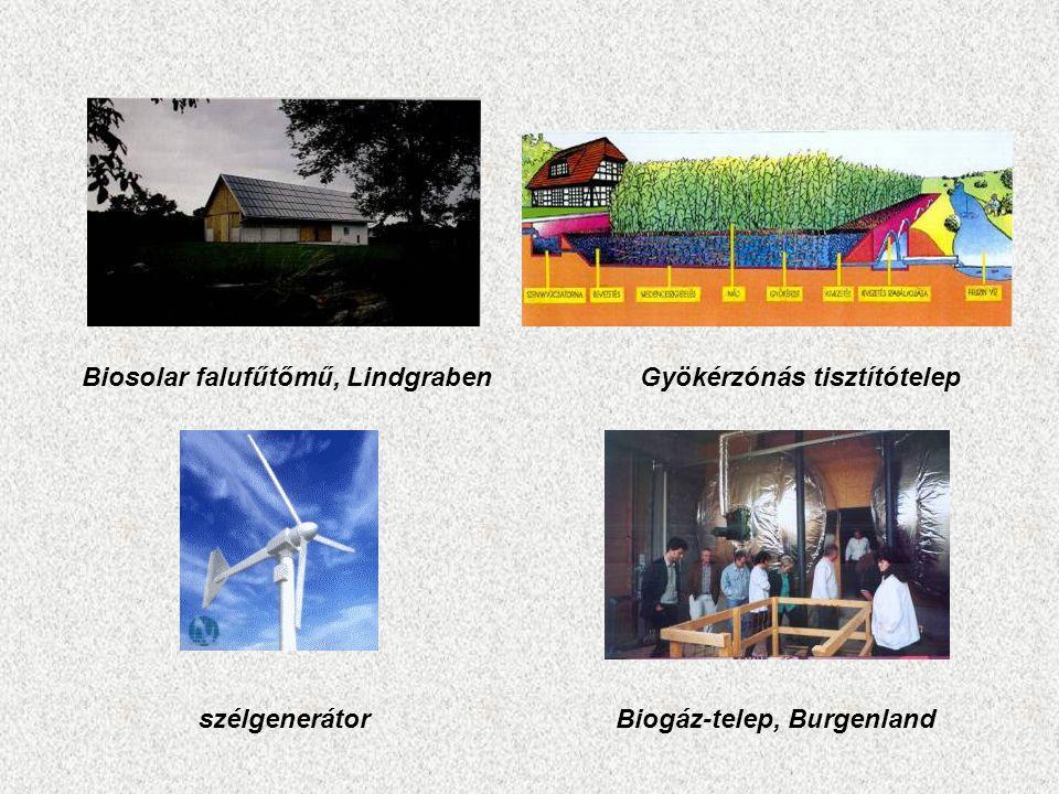 Biosolar falufűtőmű, Lindgraben