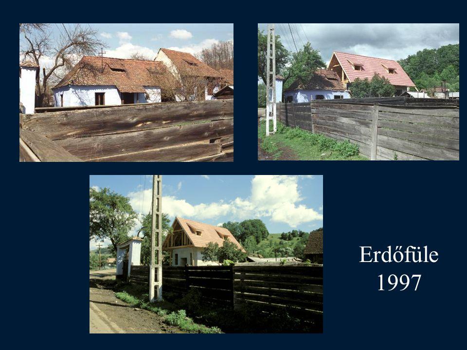Erdőfüle 1997