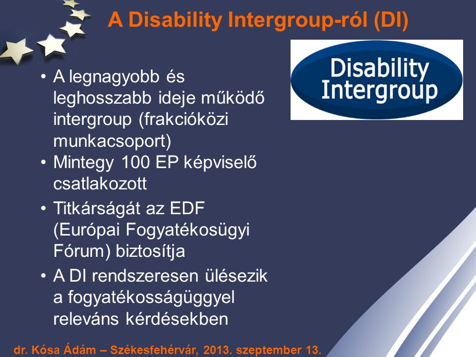 A Disability Intergroup-ról (DI)