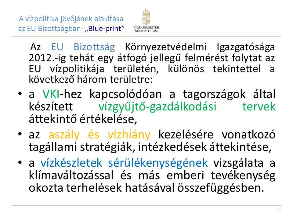 """A vízpolitika jövőjének alakítása az EU Bizottságban- """"Blue-print"""