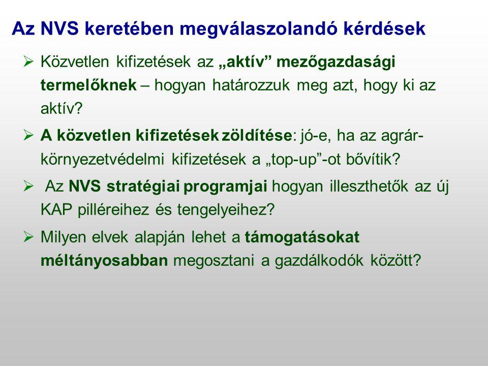 Az NVS keretében megválaszolandó kérdések