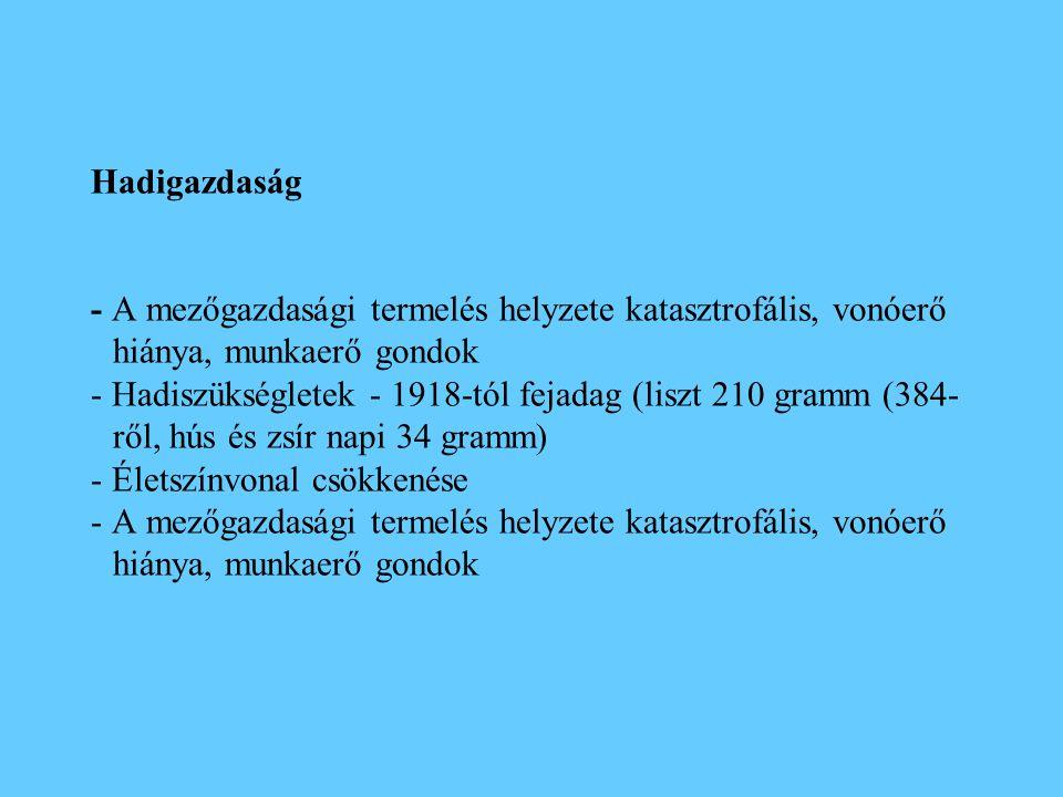 Hadigazdaság - A mezőgazdasági termelés helyzete katasztrofális, vonóerő hiánya, munkaerő gondok - Hadiszükségletek - 1918-tól fejadag (liszt 210 gramm (384- ről, hús és zsír napi 34 gramm) - Életszínvonal csökkenése - A mezőgazdasági termelés helyzete katasztrofális, vonóerő hiánya, munkaerő gondok
