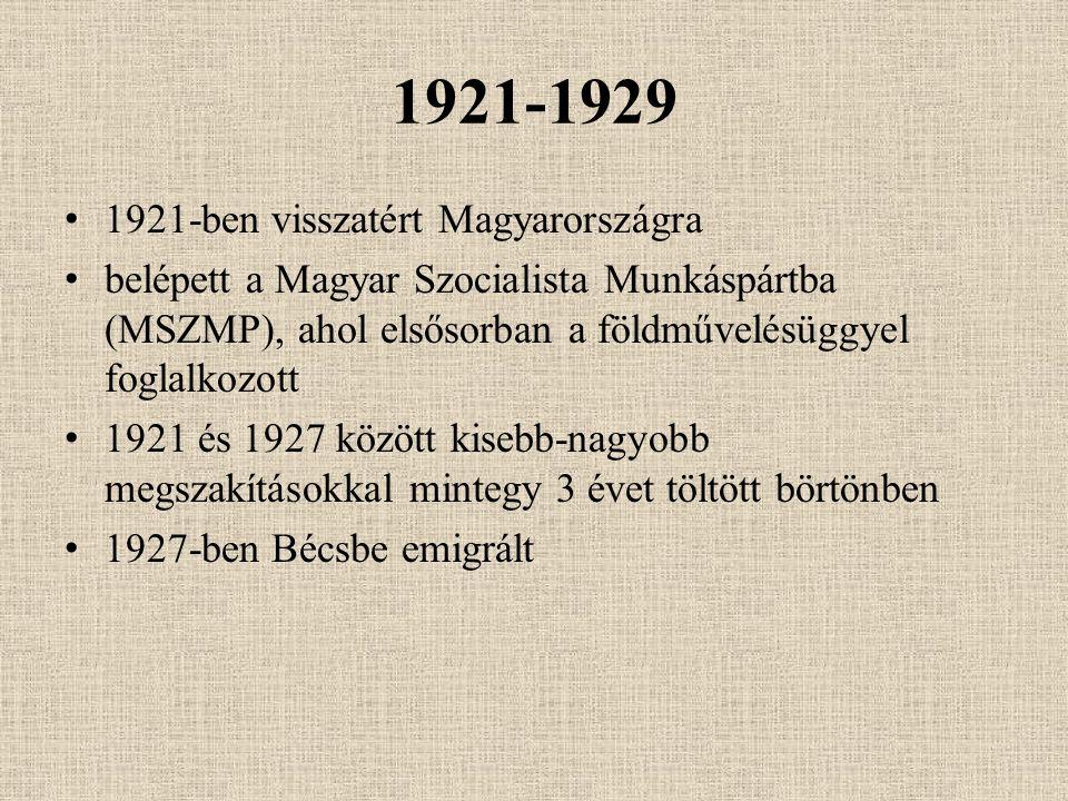 1921-1929 1921-ben visszatért Magyarországra