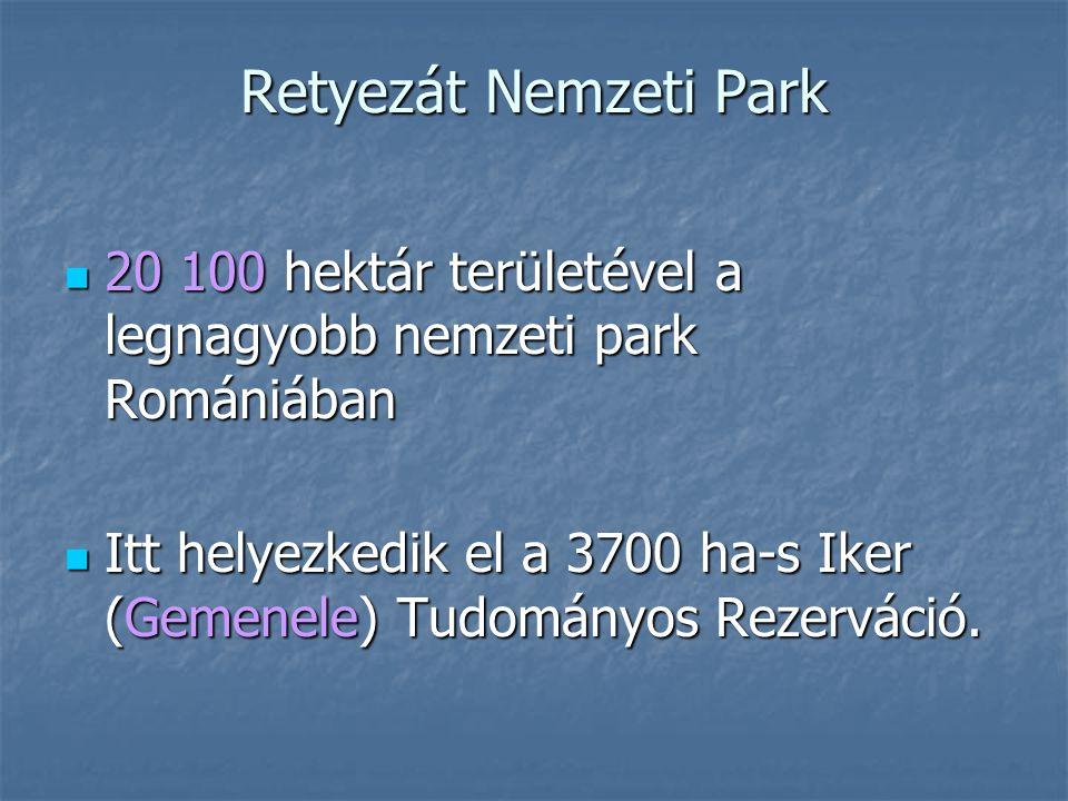 Retyezát Nemzeti Park 20 100 hektár területével a legnagyobb nemzeti park Romániában.