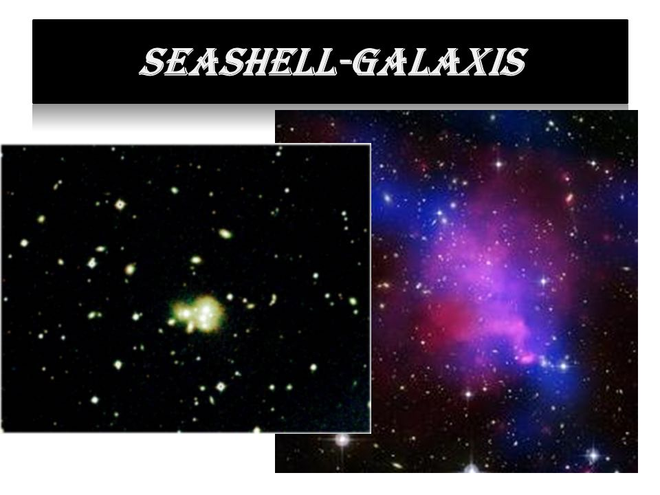 Seashell-galaxis