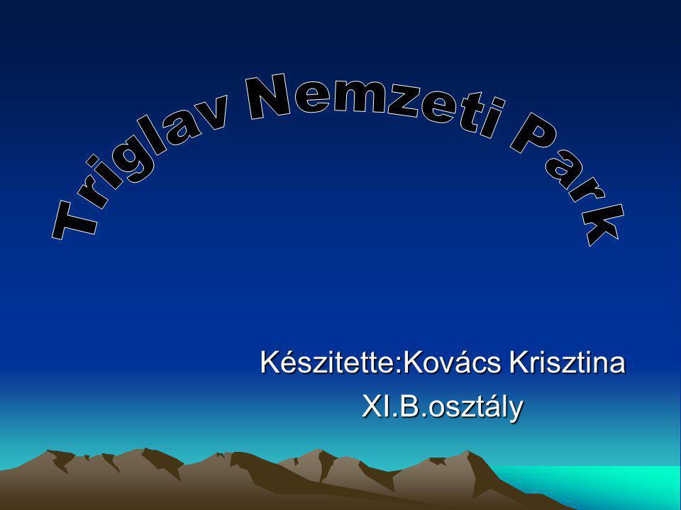 Készitette:Kovács Krisztina XI.B.osztály