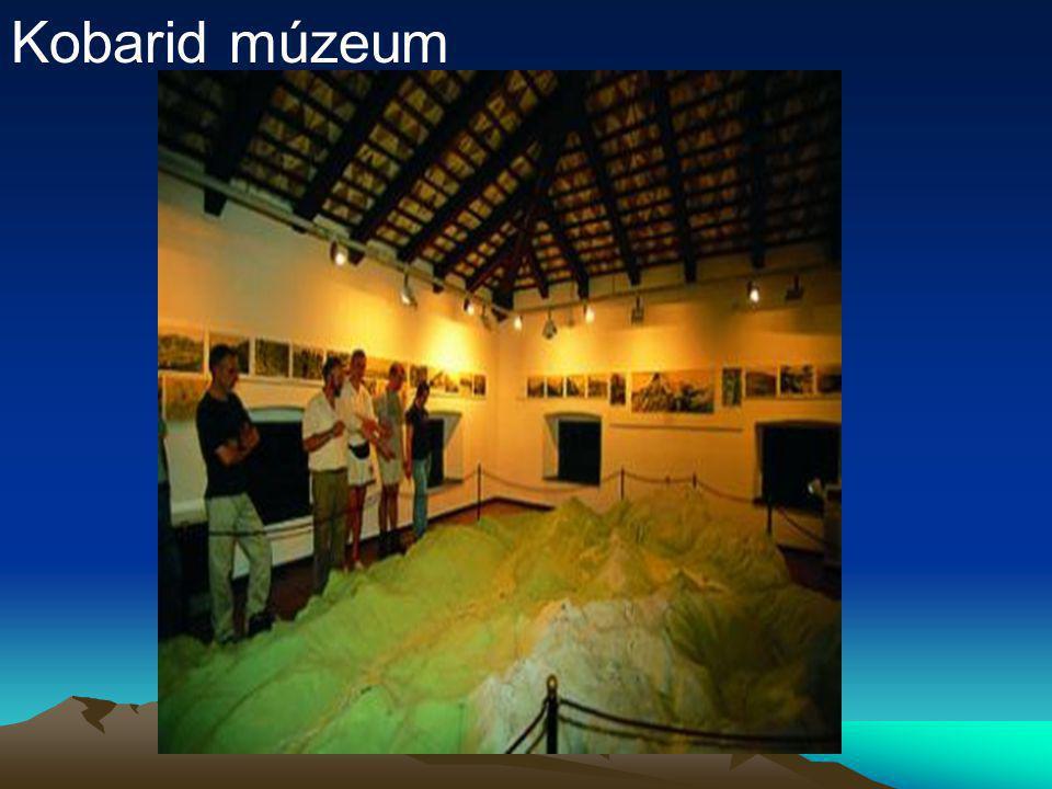 Kobarid múzeum