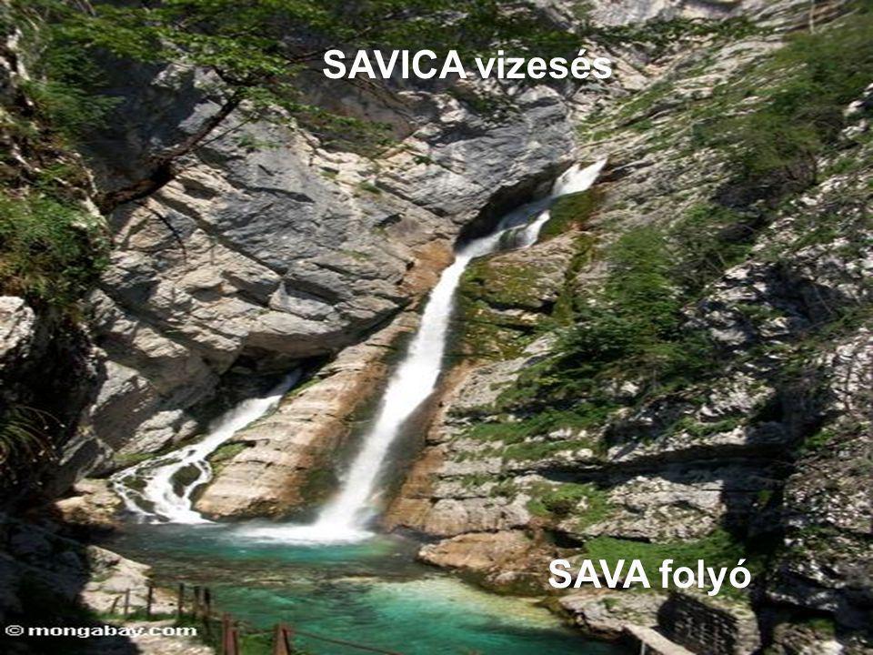 SAVICA vizesés SAVA folyó