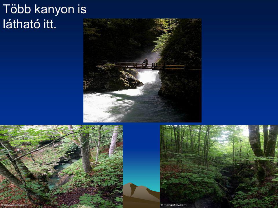 Több kanyon is látható itt.