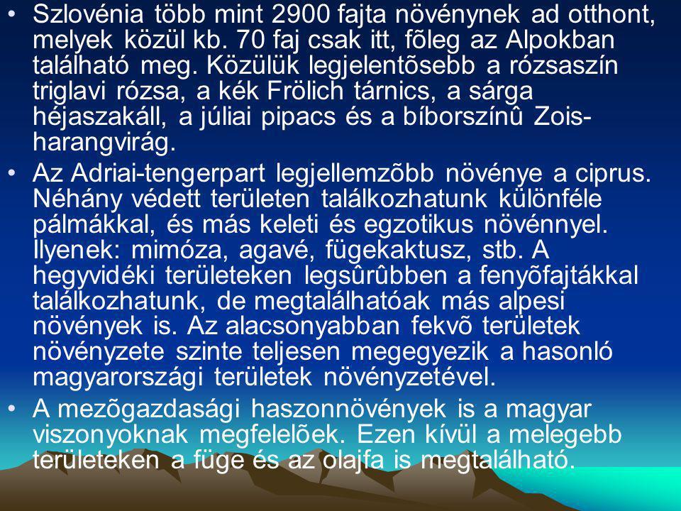 Szlovénia több mint 2900 fajta növénynek ad otthont, melyek közül kb