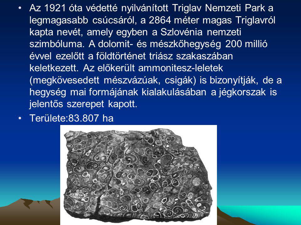 Az 1921 óta védetté nyilvánított Triglav Nemzeti Park a legmagasabb csúcsáról, a 2864 méter magas Triglavról kapta nevét, amely egyben a Szlovénia nemzeti szimbóluma. A dolomit- és mészkőhegység 200 millió évvel ezelőtt a földtörténet triász szakaszában keletkezett. Az előkerült ammonitesz-leletek (megkövesedett mészvázúak, csigák) is bizonyítják, de a hegység mai formájának kialakulásában a jégkorszak is jelentős szerepet kapott.