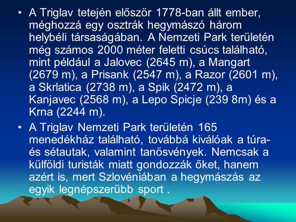 A Triglav tetején először 1778-ban állt ember, méghozzá egy osztrák hegymászó három helybéli társaságában. A Nemzeti Park területén még számos 2000 méter feletti csúcs található, mint például a Jalovec (2645 m), a Mangart (2679 m), a Prisank (2547 m), a Razor (2601 m), a Skrlatica (2738 m), a Spik (2472 m), a Kanjavec (2568 m), a Lepo Spicje (239 8m) és a Krna (2244 m).