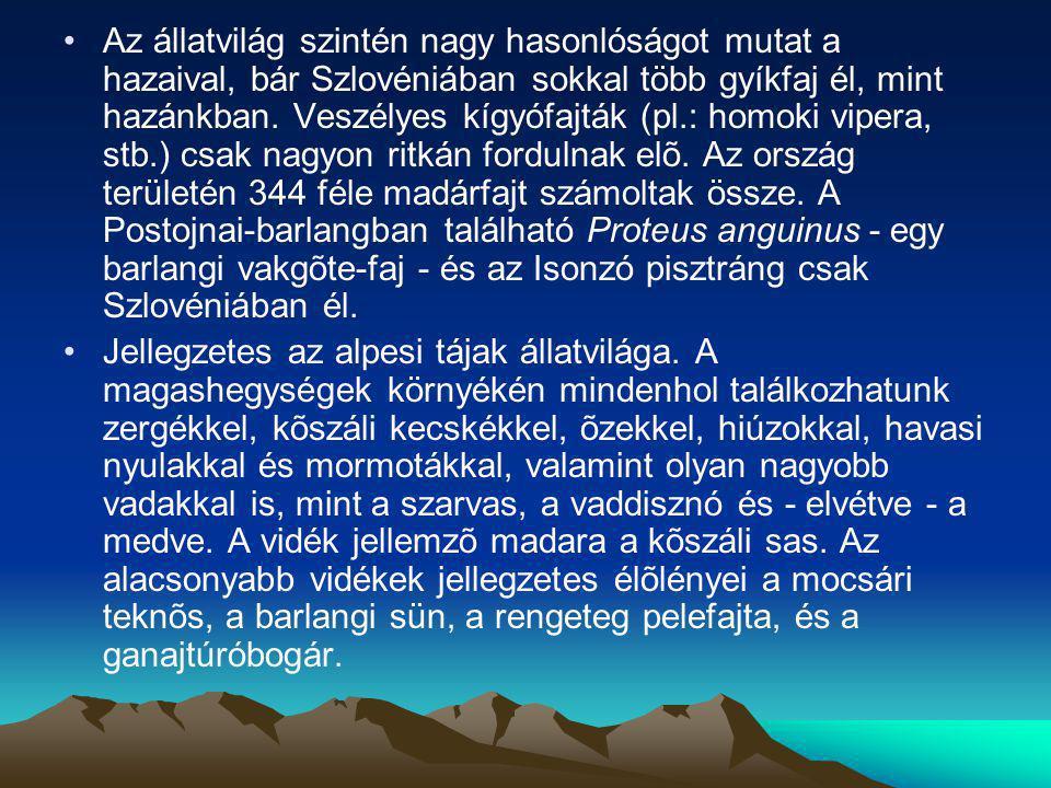 Az állatvilág szintén nagy hasonlóságot mutat a hazaival, bár Szlovéniában sokkal több gyíkfaj él, mint hazánkban. Veszélyes kígyófajták (pl.: homoki vipera, stb.) csak nagyon ritkán fordulnak elõ. Az ország területén 344 féle madárfajt számoltak össze. A Postojnai-barlangban található Proteus anguinus - egy barlangi vakgõte-faj - és az Isonzó pisztráng csak Szlovéniában él.