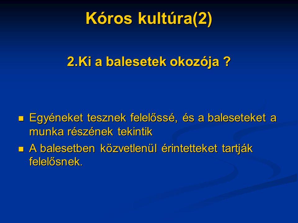 Kóros kultúra(2) 2.Ki a balesetek okozója