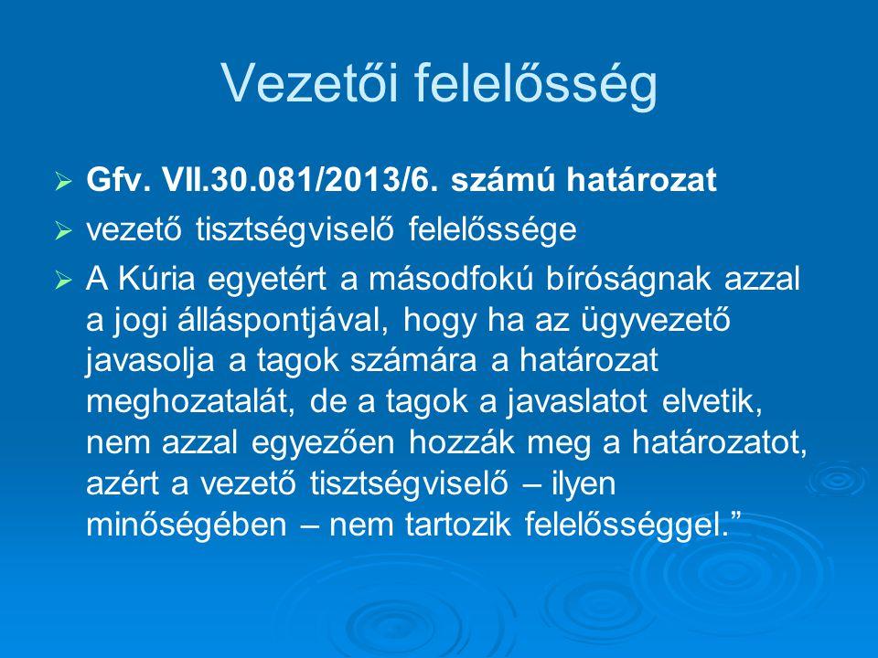 Vezetői felelősség Gfv. VII.30.081/2013/6. számú határozat