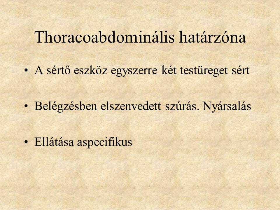 Thoracoabdominális határzóna