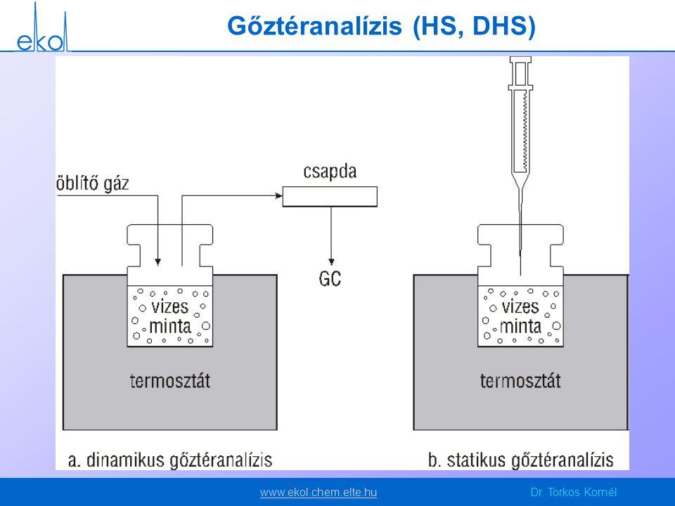 Gőztéranalízis (HS, DHS)