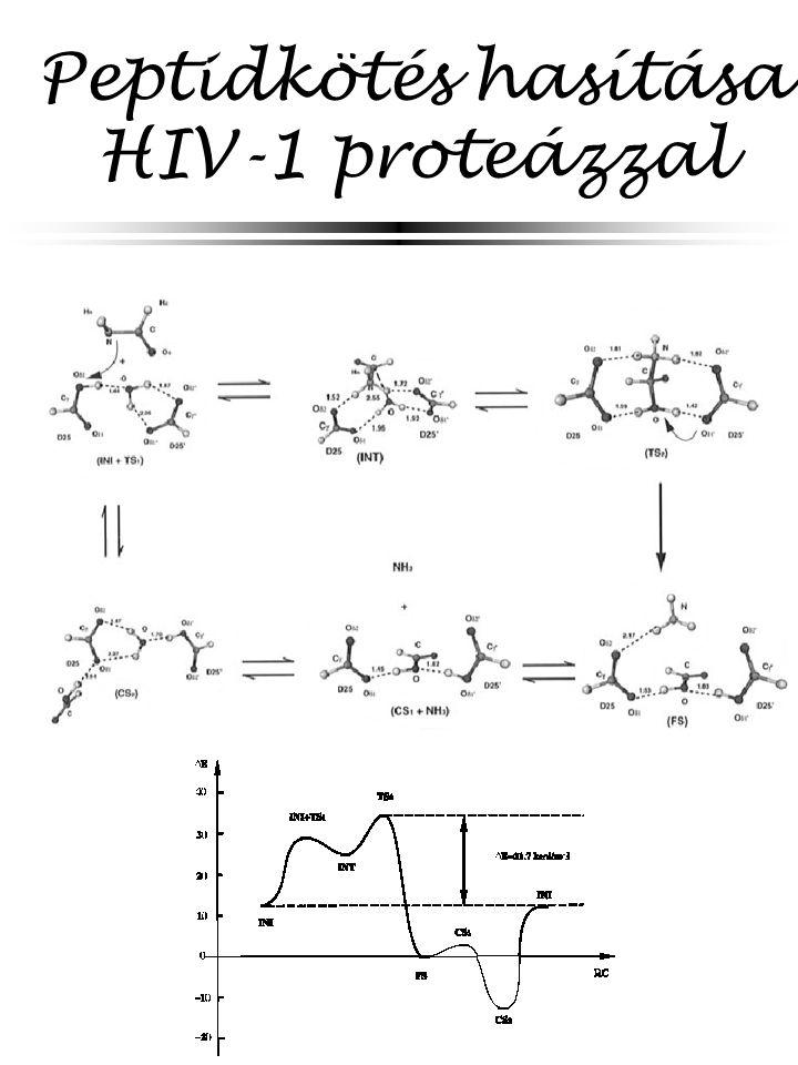 Peptidkötés hasítása HIV-1 proteázzal