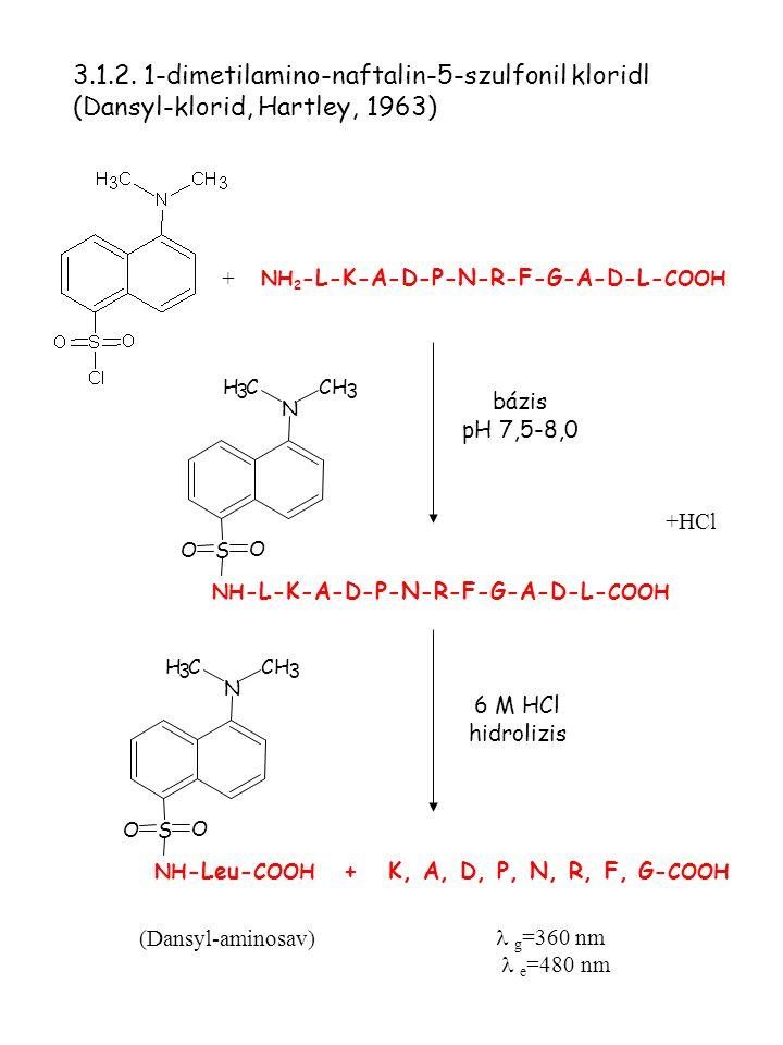 3.1.2. 1-dimetilamino-naftalin-5-szulfonil kloridl (Dansyl-klorid, Hartley, 1963)