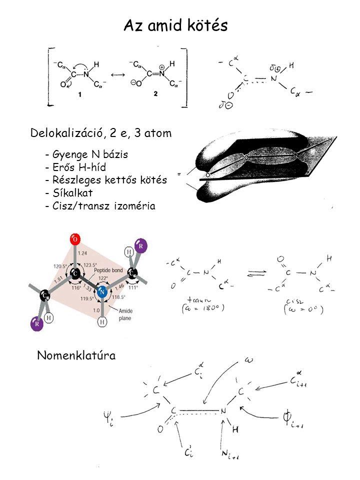 Az amid kötés Delokalizáció, 2 e, 3 atom Nomenklatúra Gyenge N bázis
