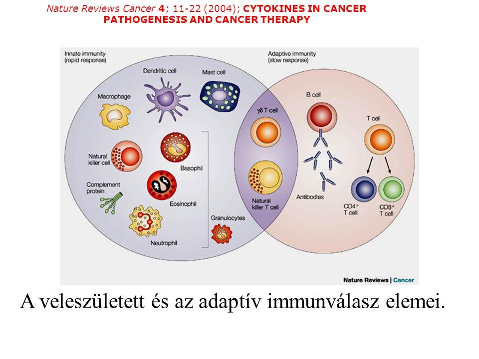 A veleszületett és az adaptív immunválasz elemei.