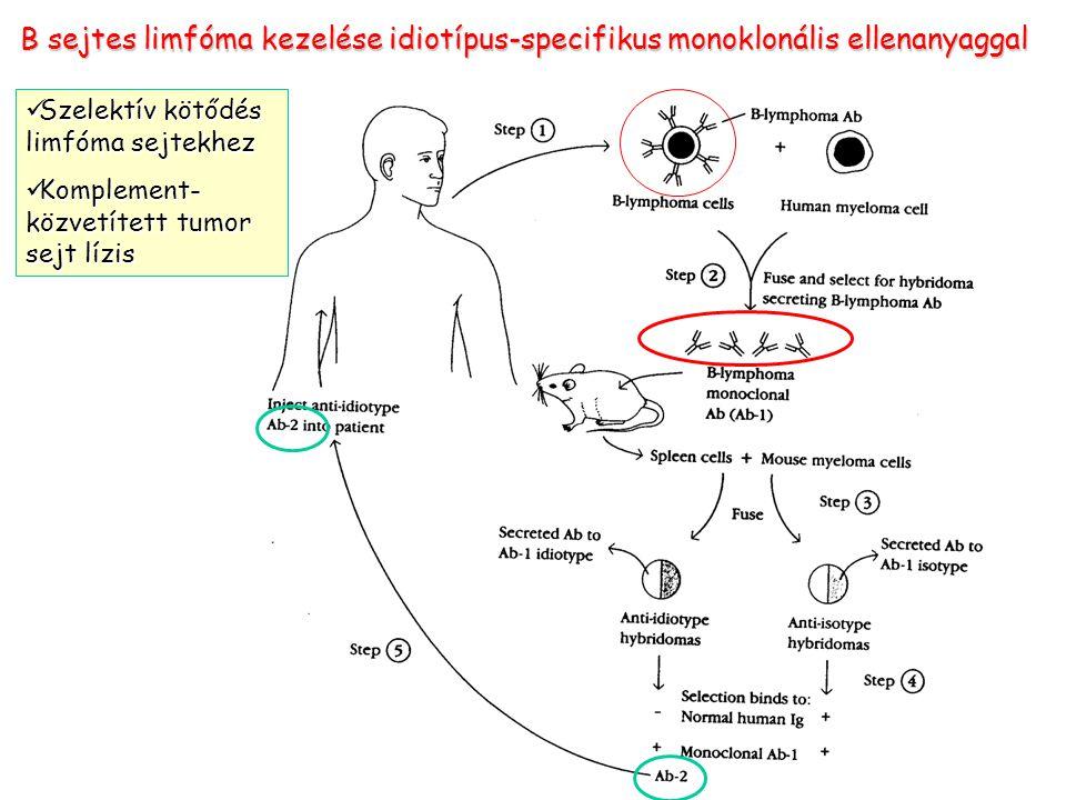 B sejtes limfóma kezelése idiotípus-specifikus monoklonális ellenanyaggal
