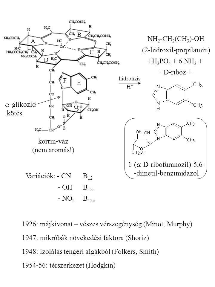 (2-hidroxil-propilamin) +H3PO4 + 6 NH3 + + D-ribóz +