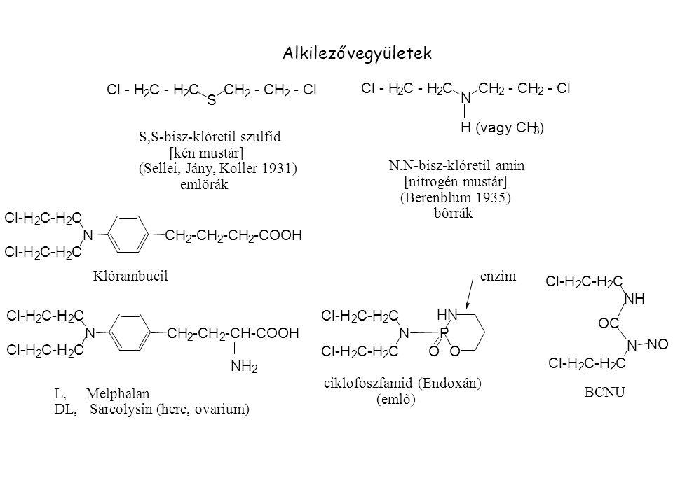 Alkilező vegyületek Cl - H C - H C CH - CH - Cl Cl - H C - H C CH - CH