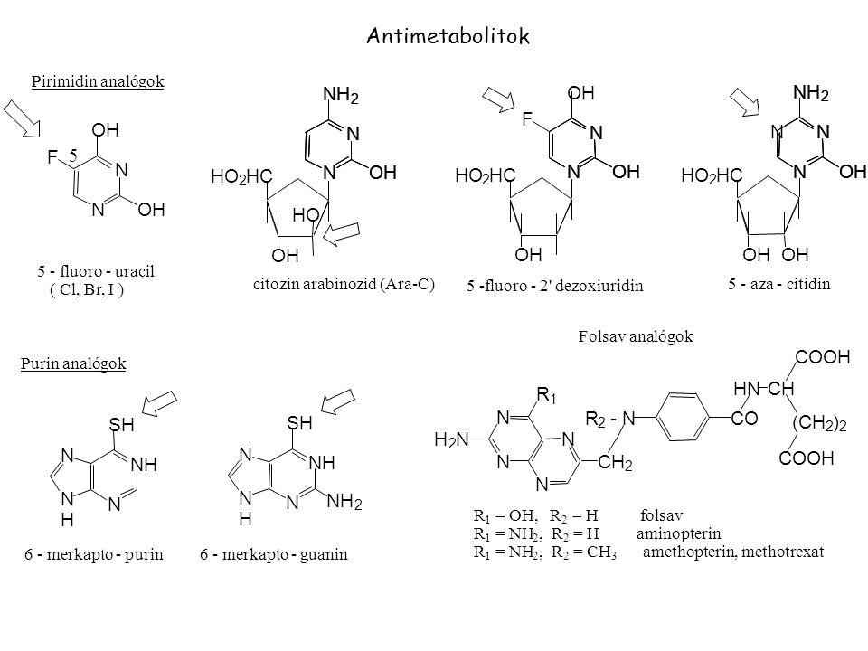N CH R - N CO NH H SH OH F HO HC HN COOH (CH ) Antimetabolitok 5