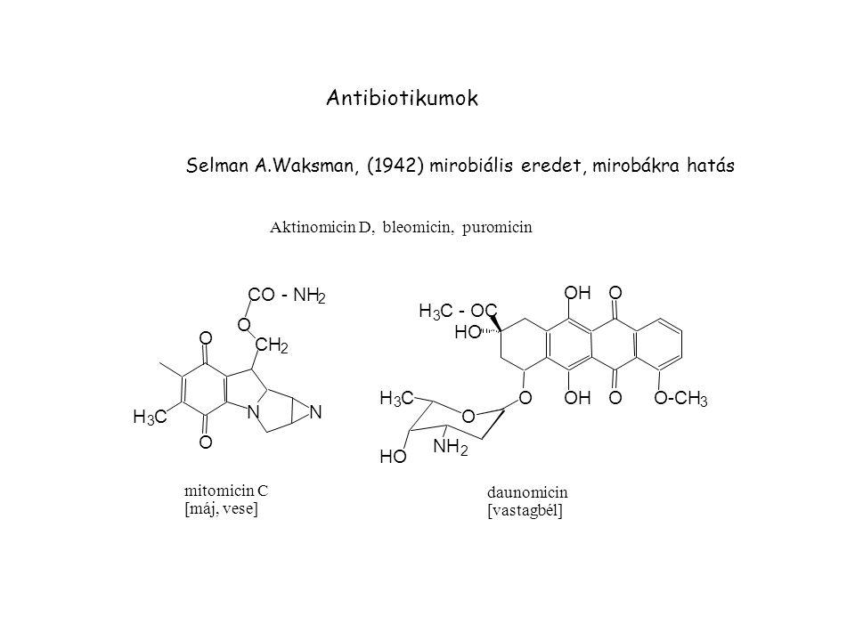 Antibiotikumok N O H C CH CO - NH NH HO C - OC OH O-CH
