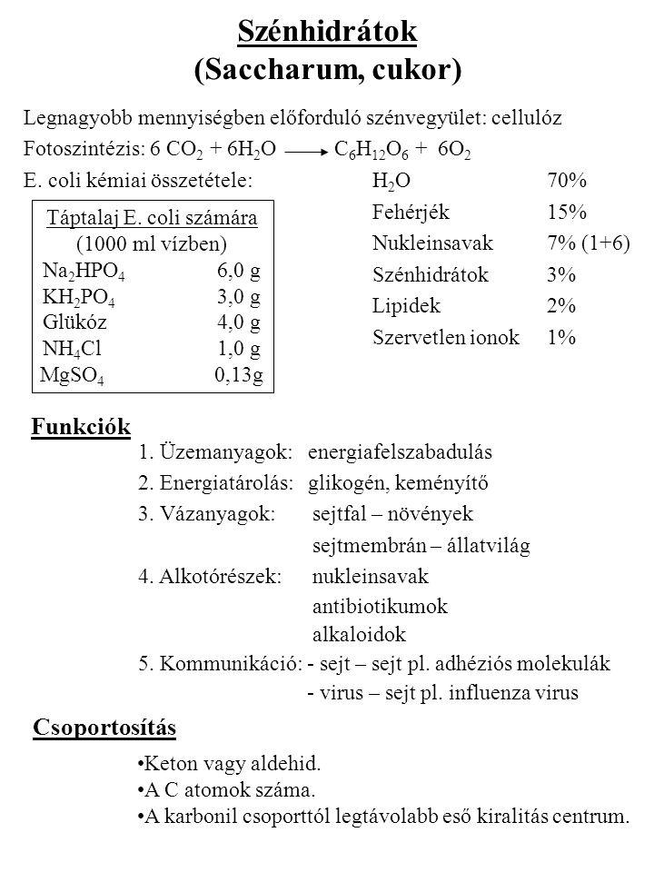 Táptalaj E. coli számára