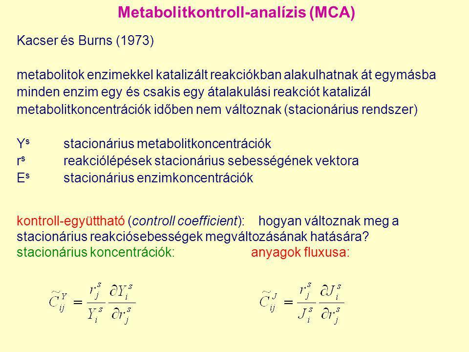 Metabolitkontroll-analízis (MCA)