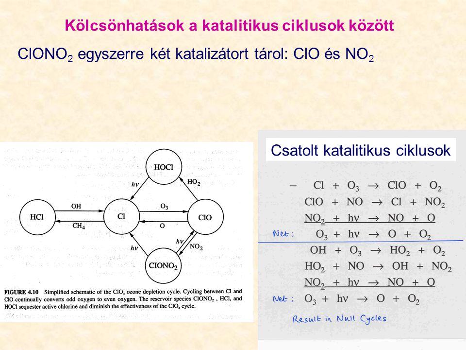 Kölcsönhatások a katalitikus ciklusok között