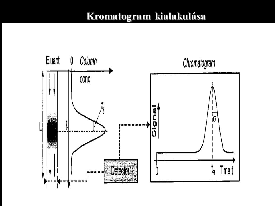 Kromatogram kialakulása