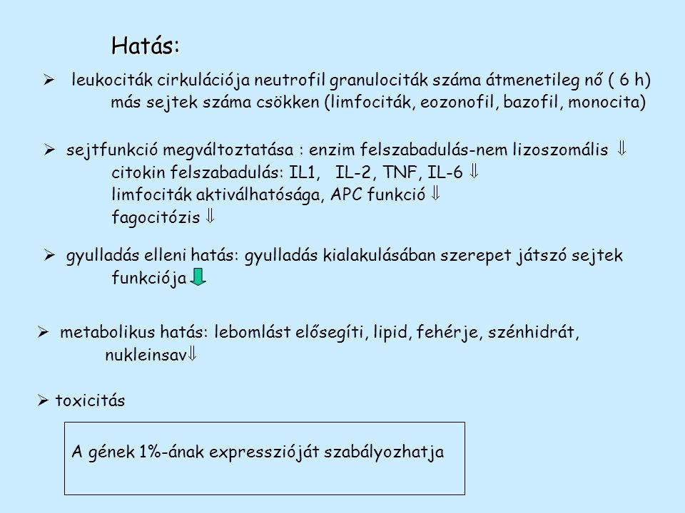Hatás: leukociták cirkulációja neutrofil granulociták száma átmenetileg nő ( 6 h)
