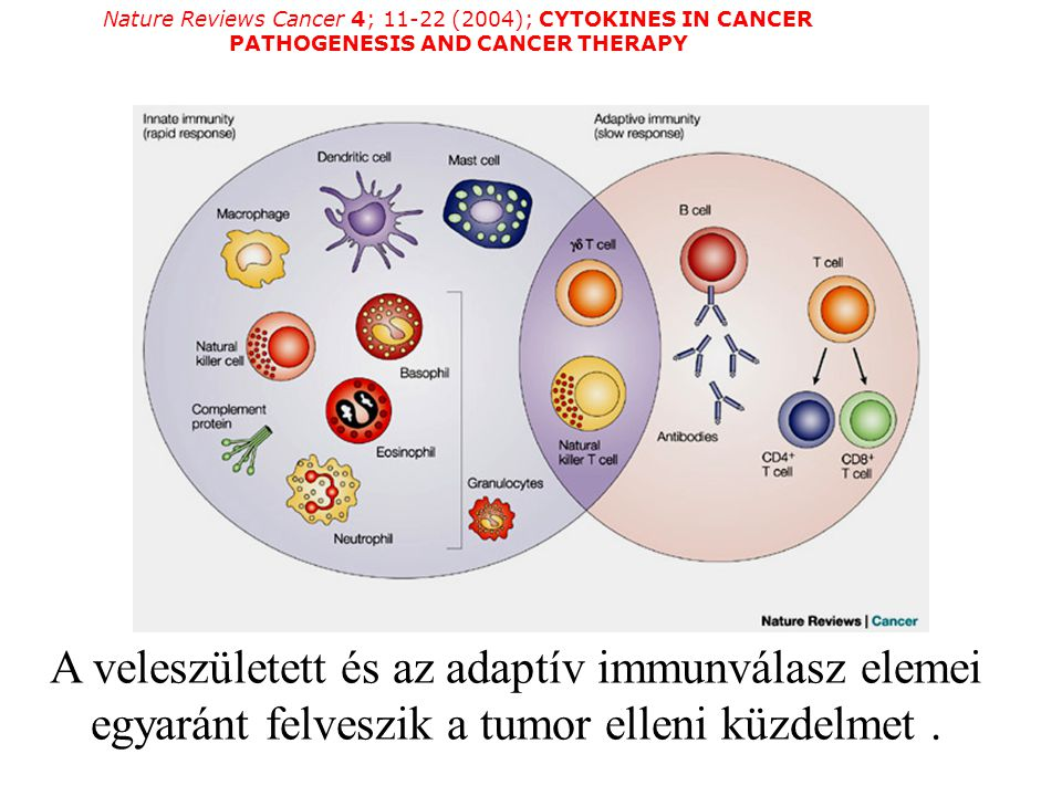 Nature Reviews Cancer 4; 11-22 (2004); CYTOKINES IN CANCER PATHOGENESIS AND CANCER THERAPY